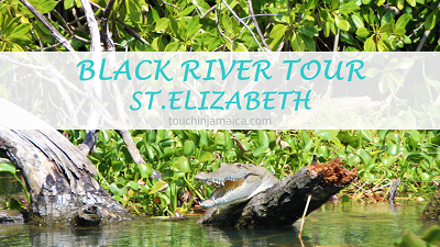 Black River Tour – St. Elizabeth