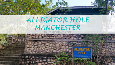 Alligator Hole – Manchester